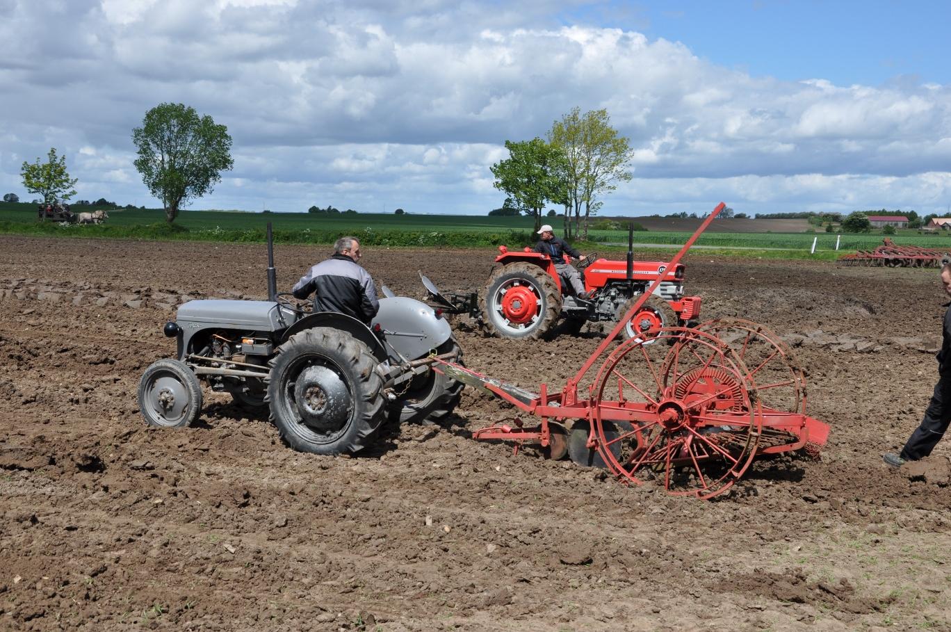 Ferguson Dage - traktorer og redskaber på arbejde i marken.