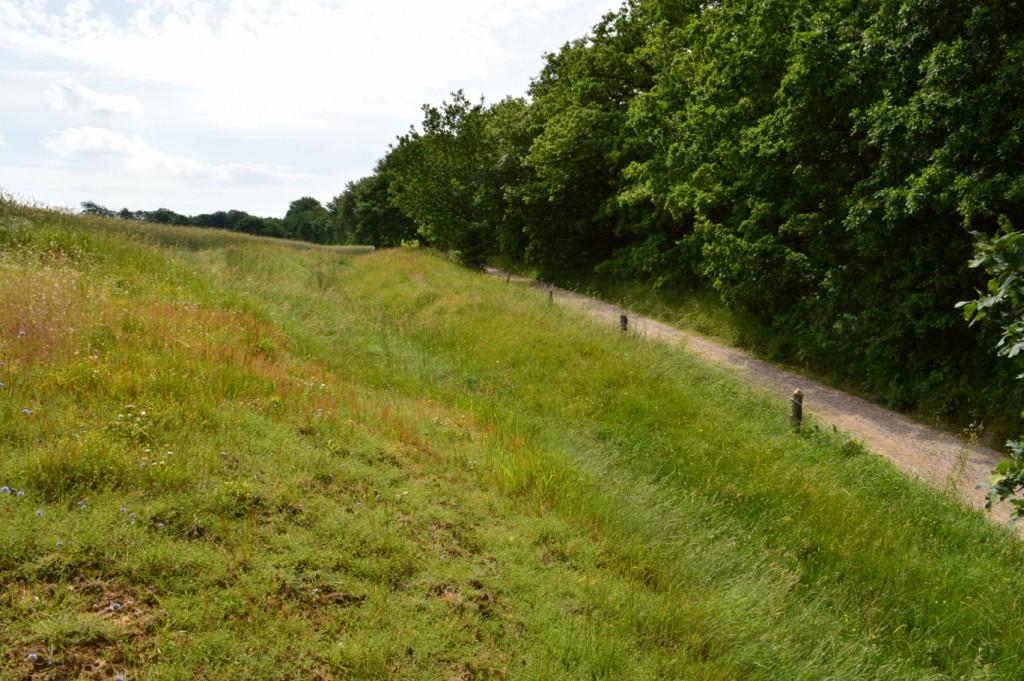 Et ældre hulvejsspor løber parallelt med den nuværende hærvej - ved Dybdal Bæk passagen.